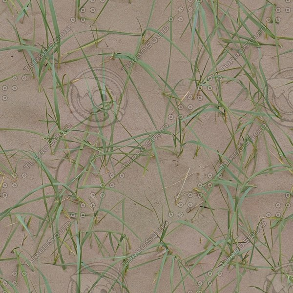 G327 Marram grass sand texture
