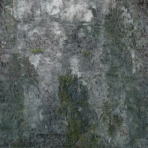 Wall193_1024.jpg