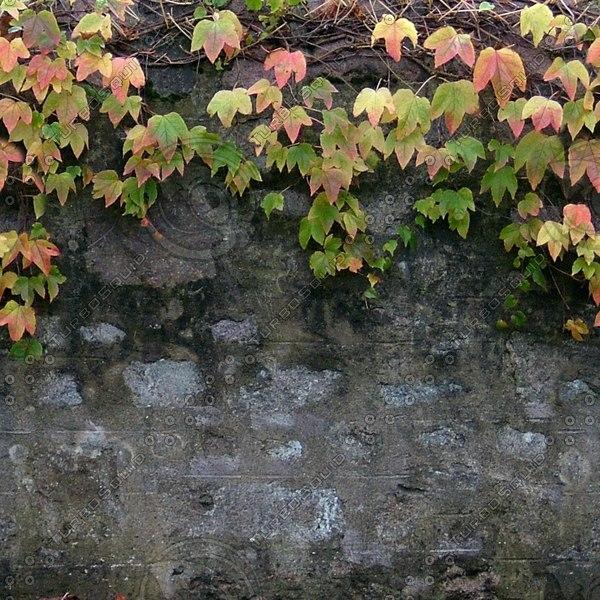Wall201_1024.jpg