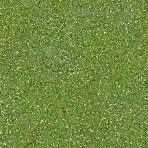 G214 grass lawn field