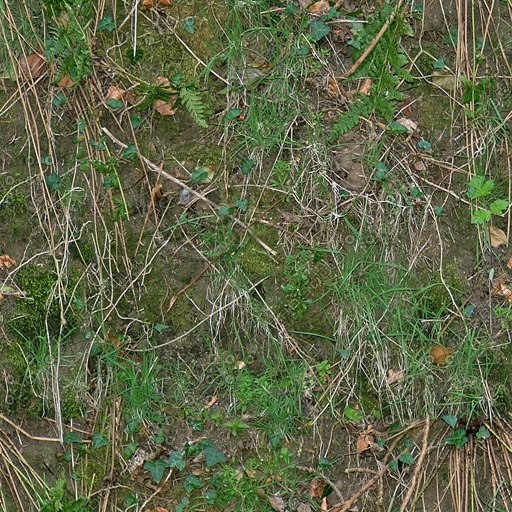 G325 mossy grassy bank texture