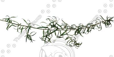 Branch_s_17.tga