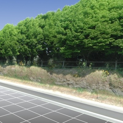 Tree line Roadside.tga