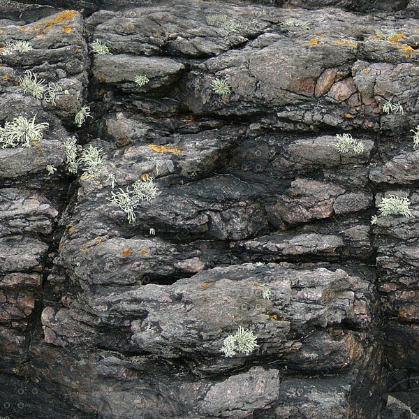 RS099 coastal rock high detail