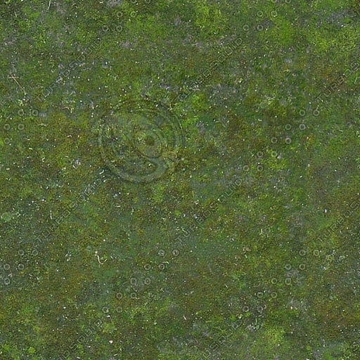 G260 mossy concrete texture