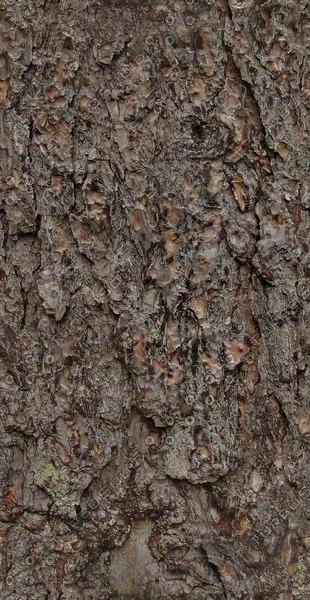 BRKT007 brown bark coarse high detail
