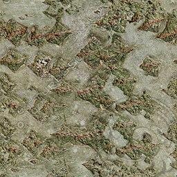 UPTBRK01 tree bark texture