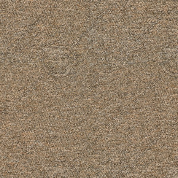 CRP007 carpet high detail brown