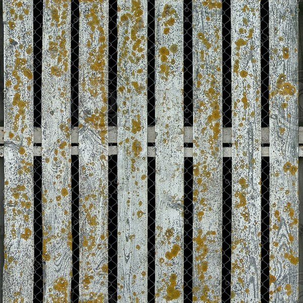 F010 old white picket fence texture