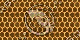 Beehive Seamless Texture