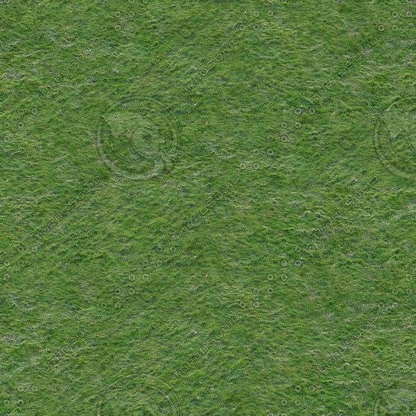 G187 grass lawn field