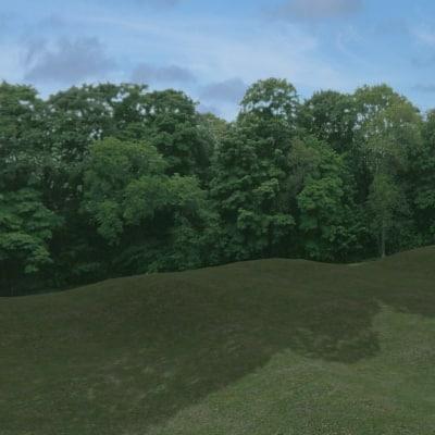 TRL007 treeline background trees