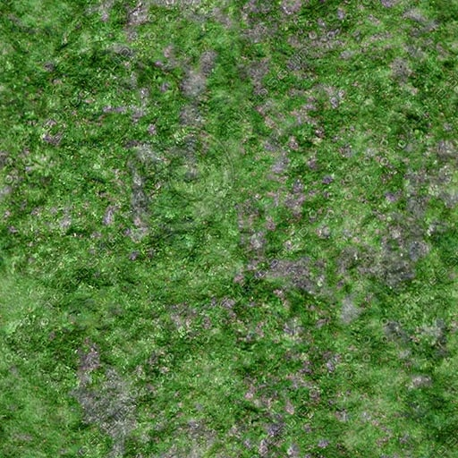 RS012 stone rock green texture