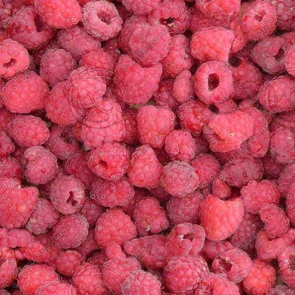 FD026 raspberry fruit berries