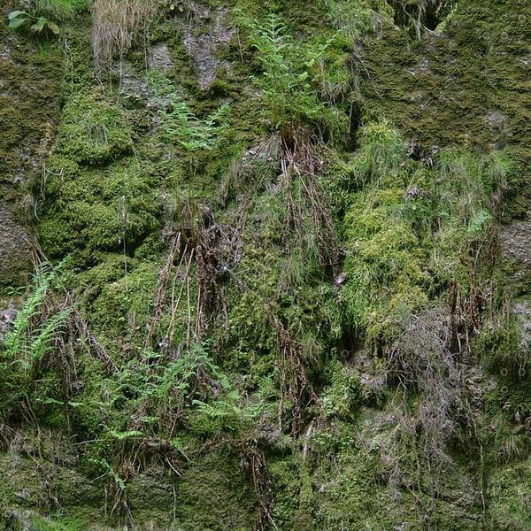 CLF005 grassy rock wall