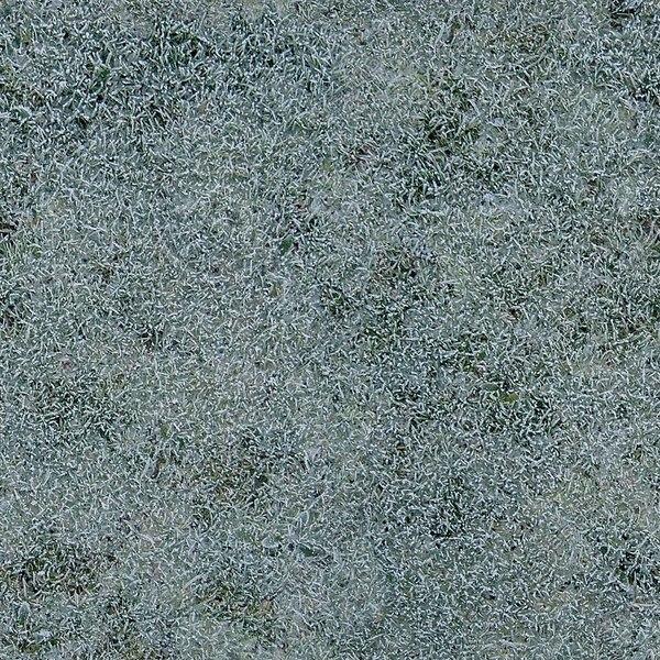 G121 frosty grass texture