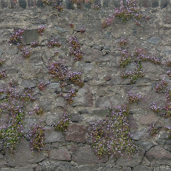 W349 overgown wall wallflower texture