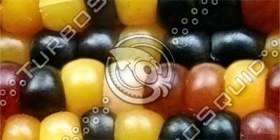Corn Seamless texture