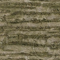 UPTBRK09 tree bark texture