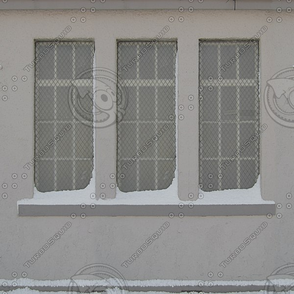 WND122 snow covered windows wall