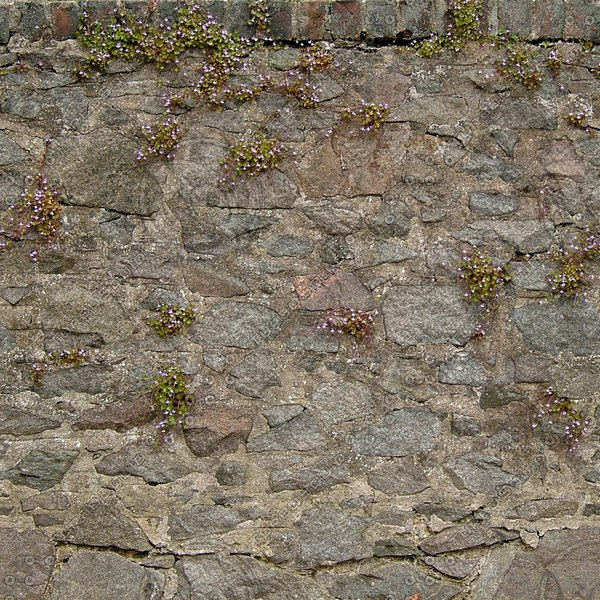 Wall180_1024.jpg
