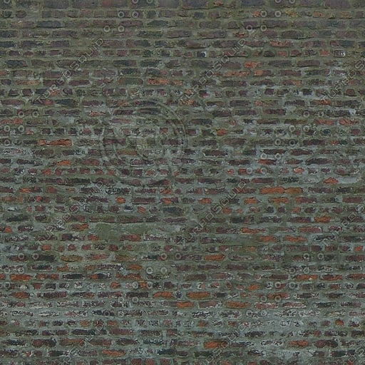 Wall202.jpg