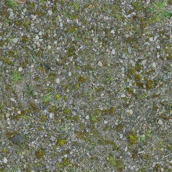 G316  stony grassy barren ground texture