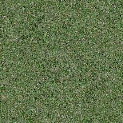 G399 grass lawn texture