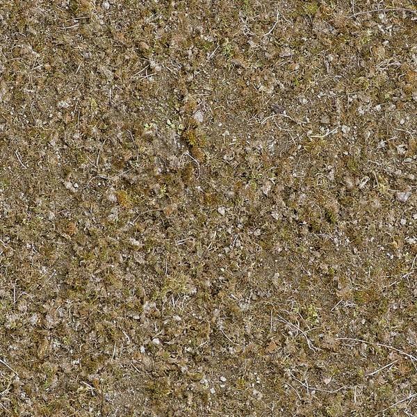 G053 dry earth moss 1024