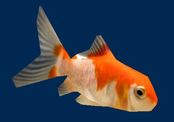 3ds max low-poly comet goldfish