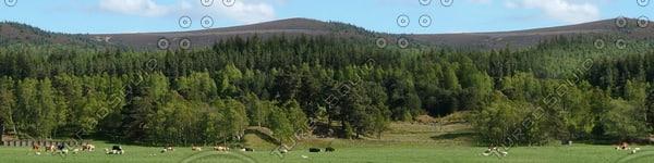 BG027 landscape hills background