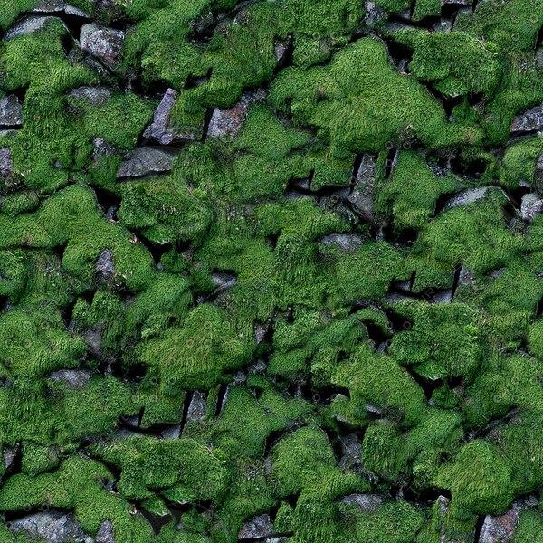 SW015 mossy dry stone dyke texture