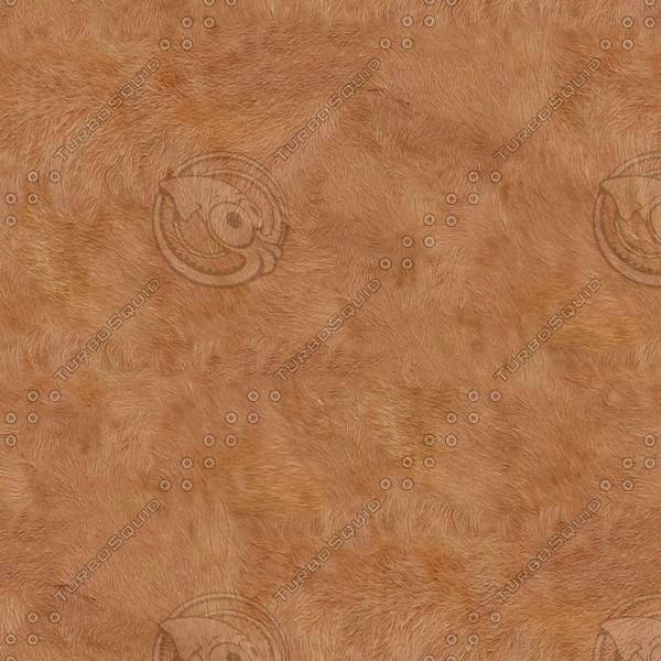 A007 cow skin hide texture