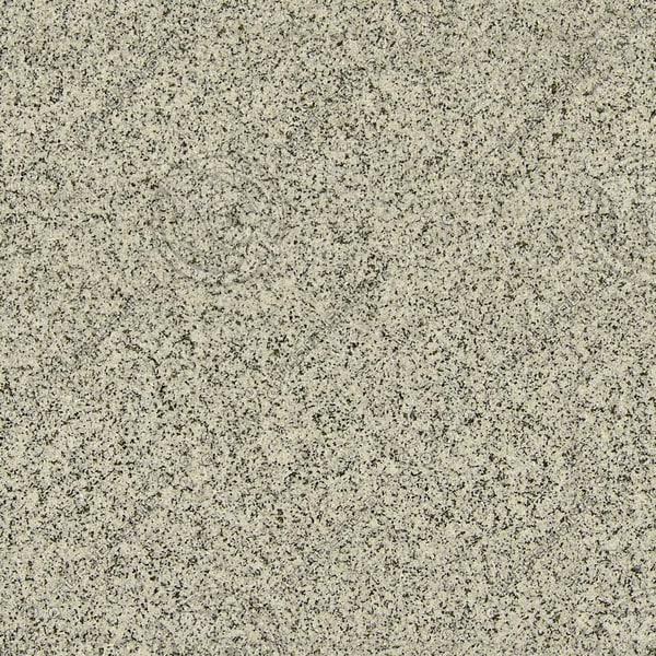 RS031 white granite texture