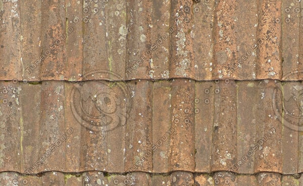R084 clay roof tiles seamless texture