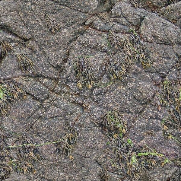 RS102 rock rocky rocks high detail