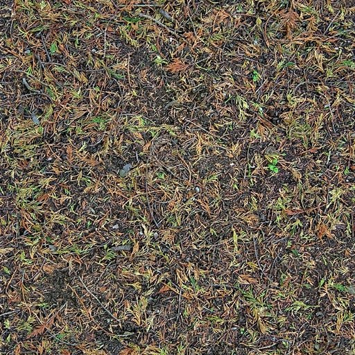 G258 forest floor texture
