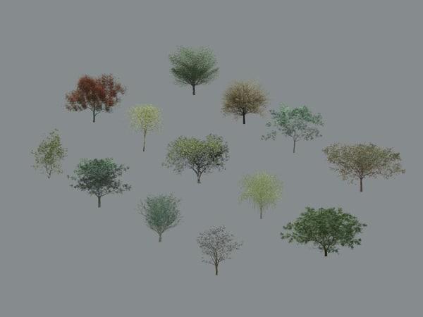Tree-Deciduous_Collection_Vol-1