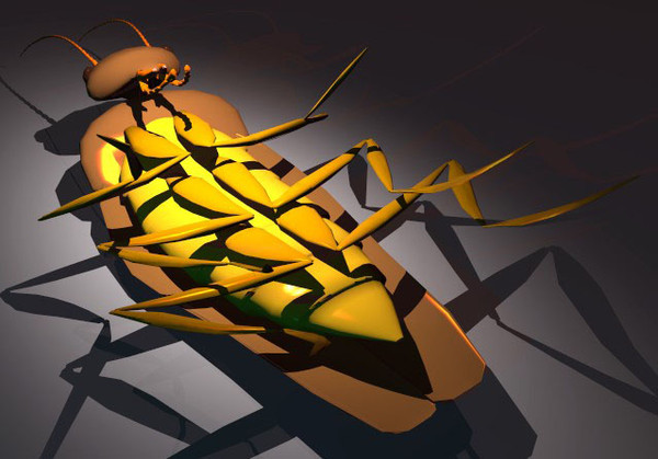 maya cockroach creatures extermination - Cockroach... by GraphicGuru
