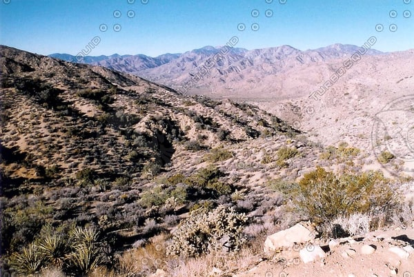 desert vista, Morongo Valley tm.jpg