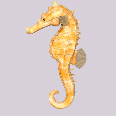 maya sea horse - Seahorseyellow.obj.zip... by Tripoint Models