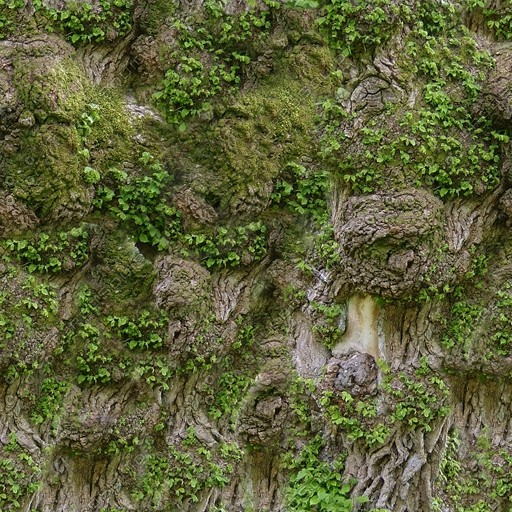 Bark015.jpg