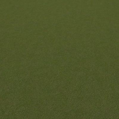G026 grass lawn short