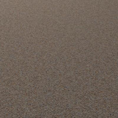 G420 beach desert sand SRF