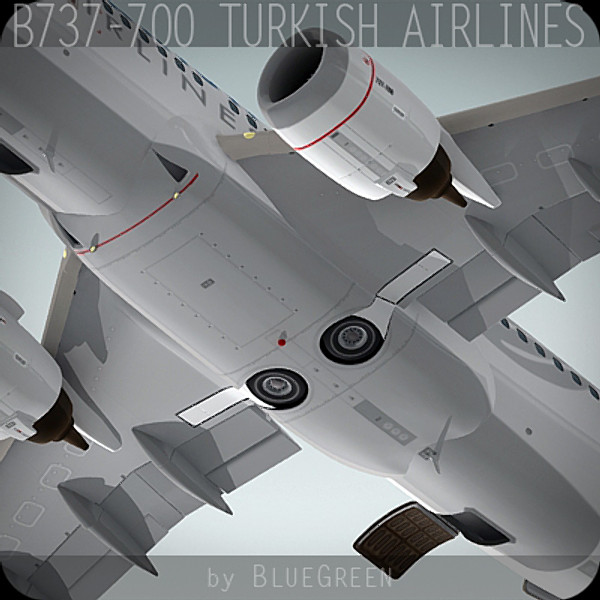 Boeing 737-700 Turkish Airlines