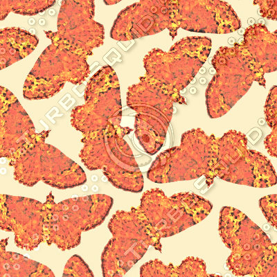 fabric_mothpattern