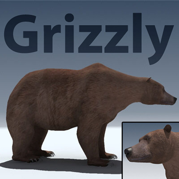 grizzly bear obj - Grizzly Bear... by Braden Lehman