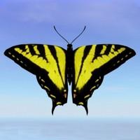 Tiger Swallowtail.obj.zip