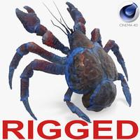 3D model coconut crab rigged