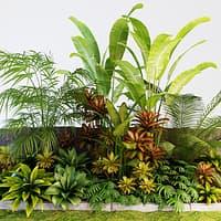 palm composition model